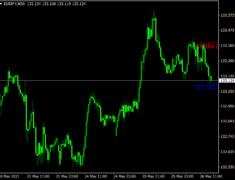 Last High Low Stop Loss Indicator